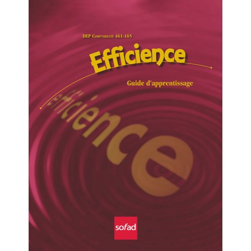 461-165 – Efficience