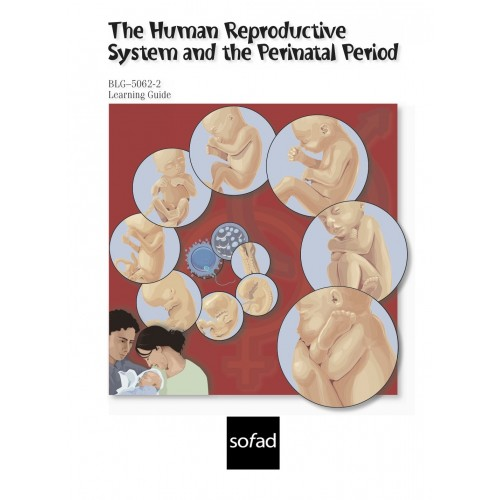 BLG-5062-2 – The Human Reproductive System and Perinatal Period