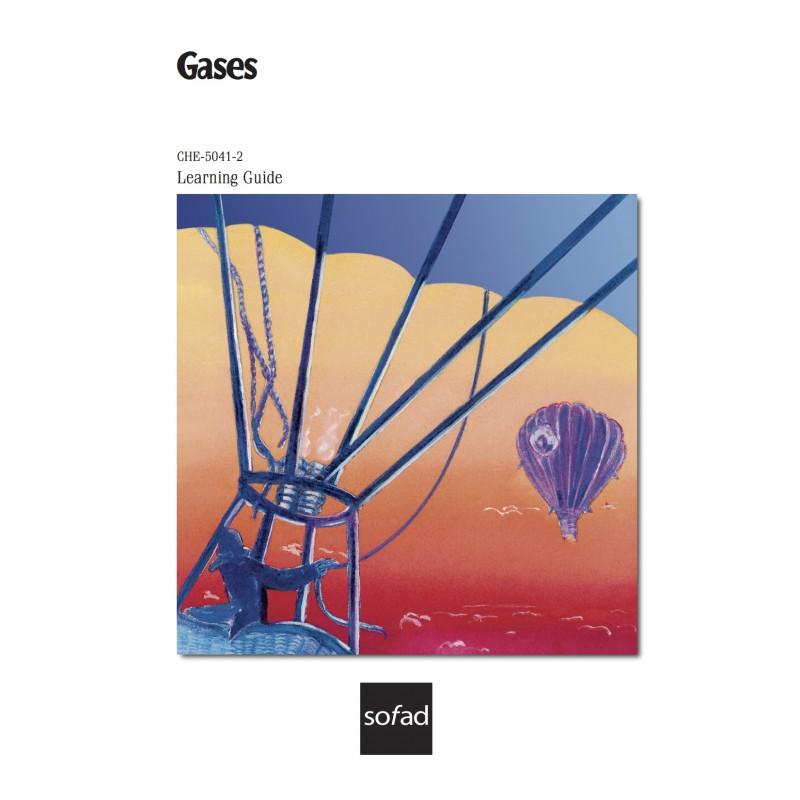 CHE-5041-2 – Gases